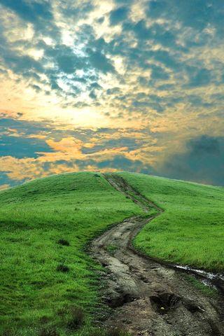 Pathway-back