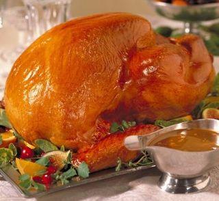 Turkey-thanksgiving2
