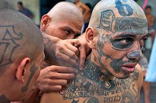 Tattoo gangs
